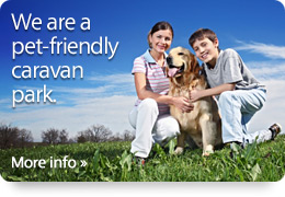 We are a pet-friendly caravan park. Click for more info.